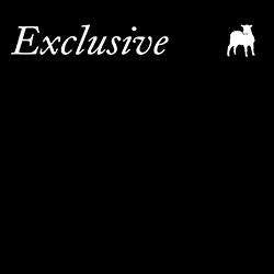 online-exclusive