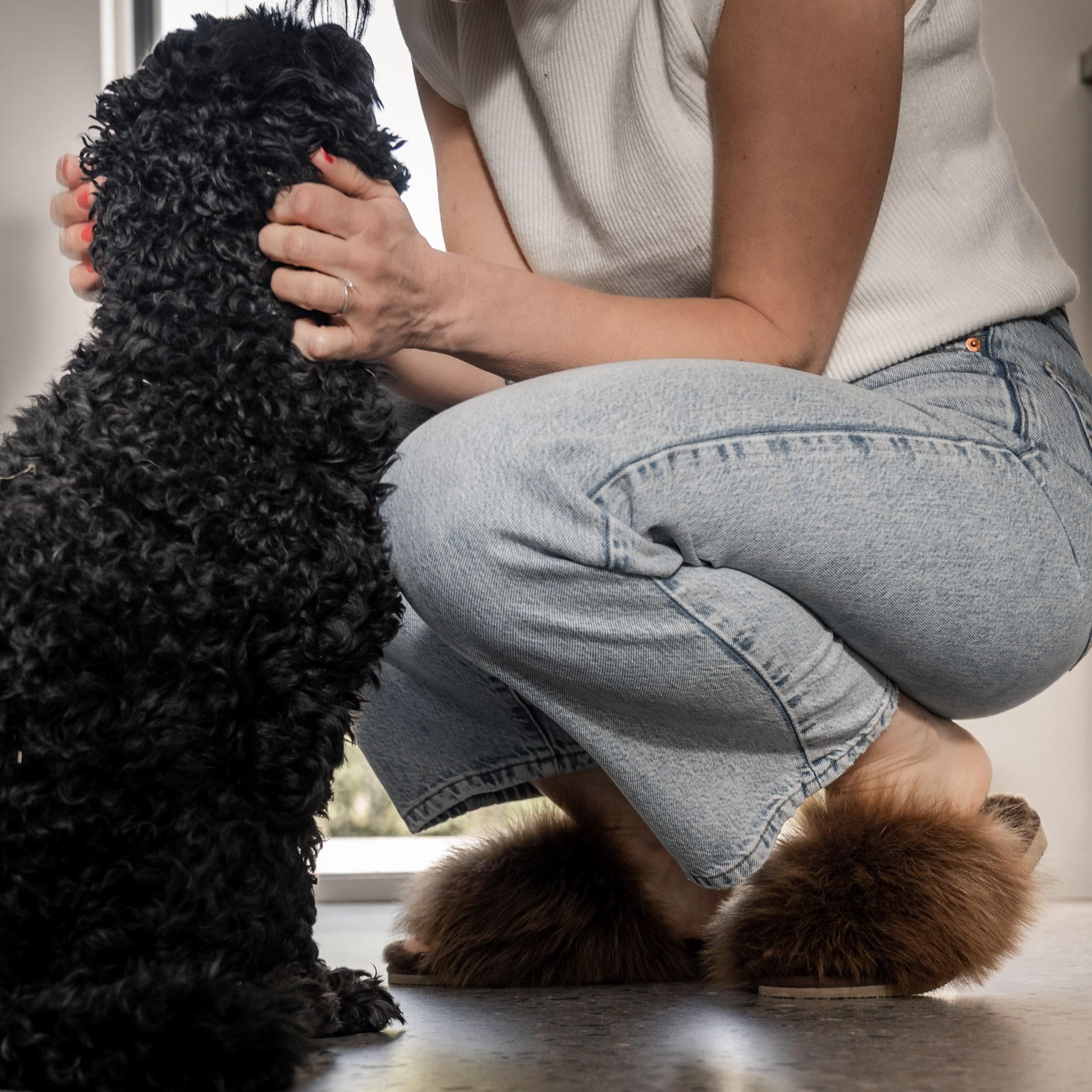 tessan i rusty brown på fötterna med en hund som klappas